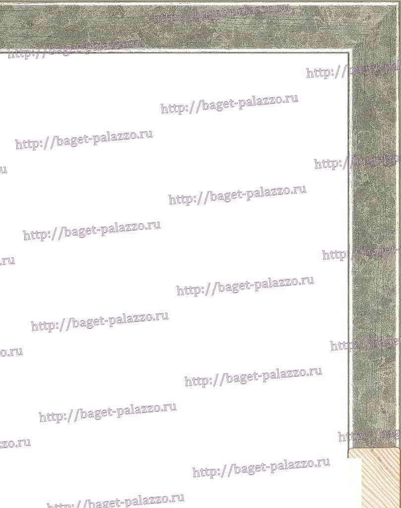 NA079.0.308 Деревянный багет